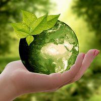 ¿Es la economía circular un disruptivo concepto moderno? No, ya existía hace milenios