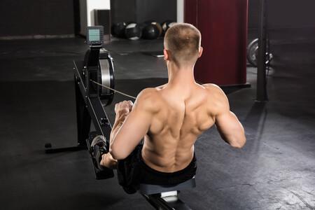 Musculatura Remo