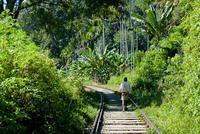 Bellos paisajes y trekking en Ella, Sri Lanka