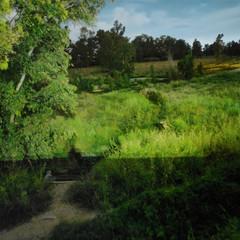 Foto 37 de 43 de la galería realme-6-pro-galeria-fotografica en Xataka