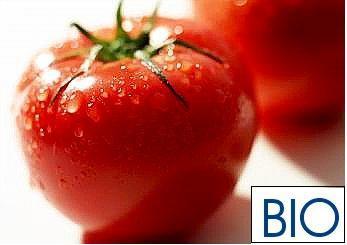 Los consumidores alemanes valoran mucho los productos biológicos