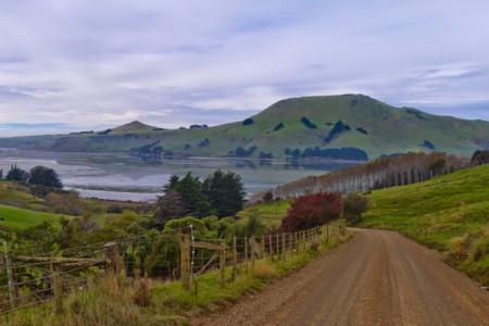 Paisajes de película y fauna marina en la intacta costa de Catlins, Nueva Zelanda