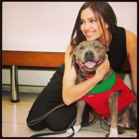 Irina Shayk madrina animales