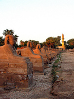 Egipto: se inaugurará la Avenida de las Esfinges