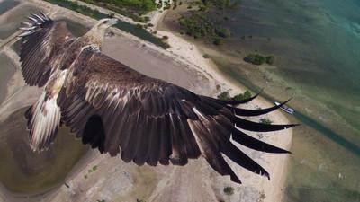 Seis fotografías hechas con un drone. Redescubriendo lugares desde el aire