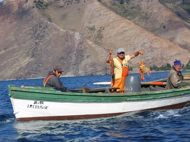 1024px Isla Juan Fernandez Langostas Lobsters