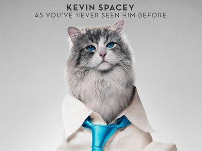 'Siete vidas, este gato es un peligro', tráiler de una chocante comedia con Kevin Spacey