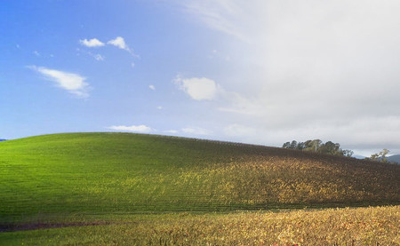 Bliss, el fondo de pantalla de Windows XP y el mismo lugar en 2006