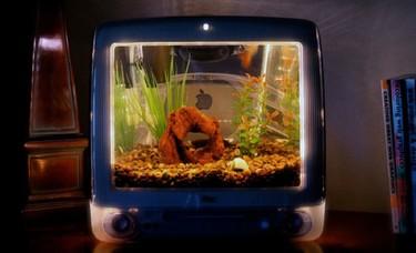 Un viejo iMac convertido en un acuario