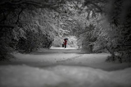 escenas-de-nieve-2.jpg