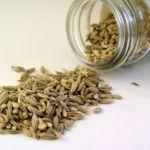 Semillas de hinojo, una buena fuente de hierro para tu dieta vegetariana