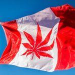 El negocio de la legalización del cannabis, el caso de Canadá