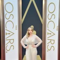 Julie Delphy Oscar 2014