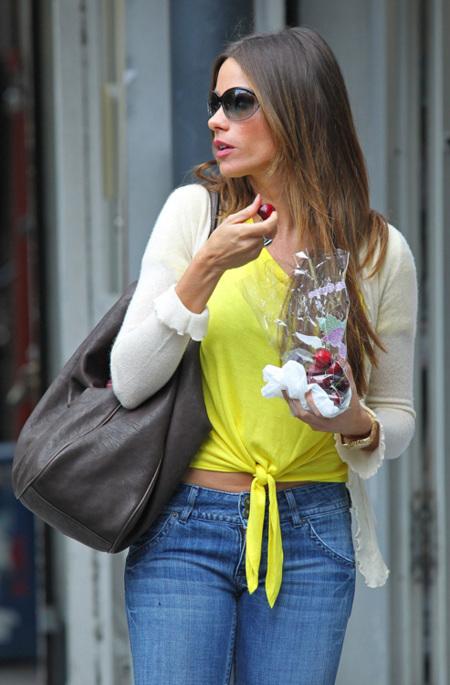 Sofia Vergara, un estilo con curvas y alegría