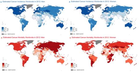 Incidencias Y Mortalidades
