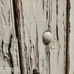 Foto 7 de 45 de la galería nubia-red-magic-5g-galeria-fotografica en Xataka