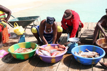 1024px Local Cape Verde Women Preparing And Selling Fish Santa Maria Sal Cape Verde 4334769216