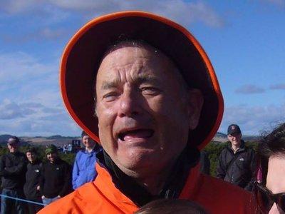 ¿Bill Murray o Tom Hanks? Internet no se pone de acuerdo