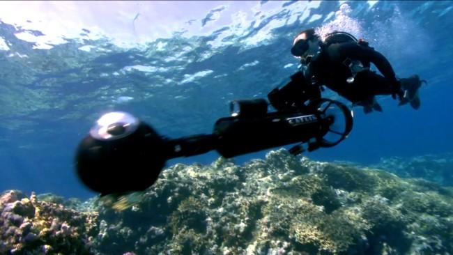 Con Google Fish View podrás recorrer el fondo del océano y contemplar la vida acuática
