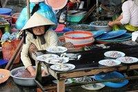 Vietnam: el mercado central de Hoi An