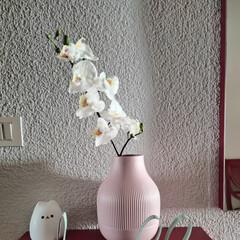 Foto 13 de 51 de la galería xiaomi-mi-11-galeria en Xataka