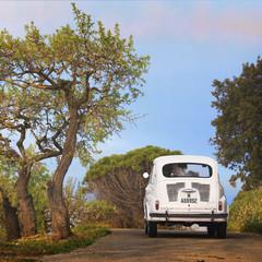 Foto 12 de 64 de la galería seat-600-50-aniversario en Motorpasión