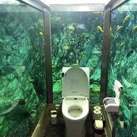 ¿Te imaginarías ir al baño y estar rodeado por un acuario gigante? Tendrás que ir a Japón para vivir esta experiencia