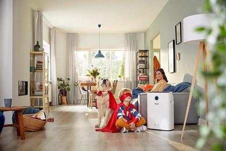 Guía de compra de purificadores de aire: cómo elegir el modelo adecuado y 12 propuestas de 100 a 600 euros