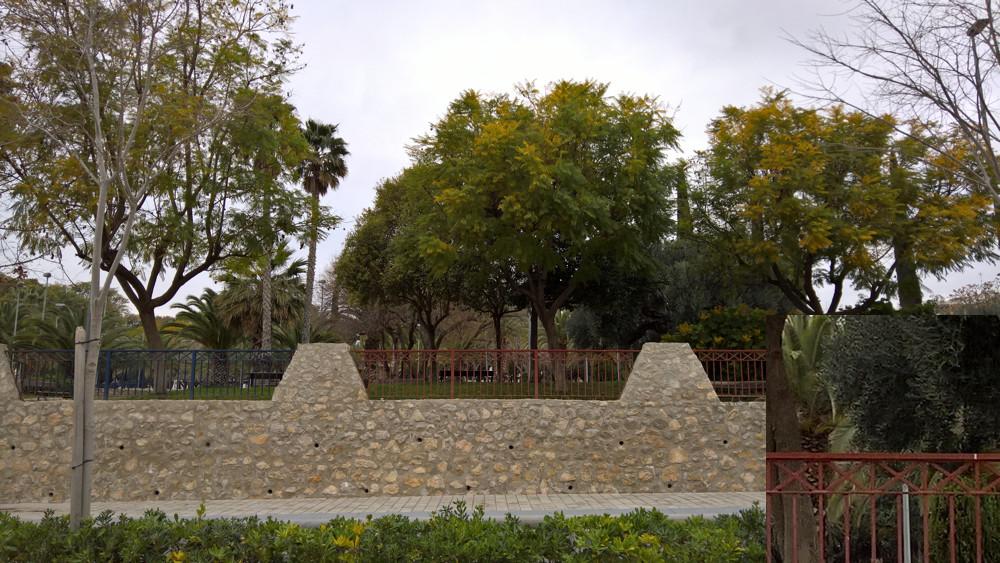 Lumia Arbol