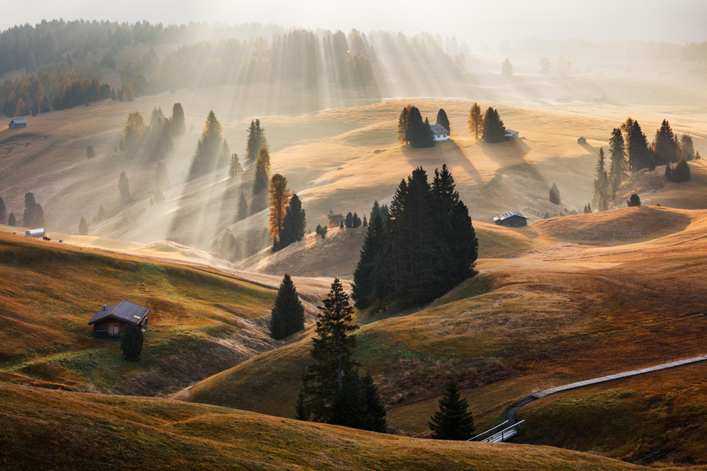 131021881099906245 Martin Rak Winner Czech Republic National Award 2016 Sony World Photography Awards