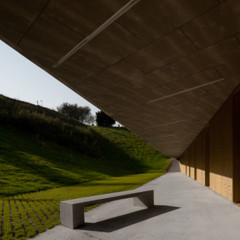 Foto 10 de 14 de la galería espacios-para-trabajar-basque-culinary-center en Decoesfera