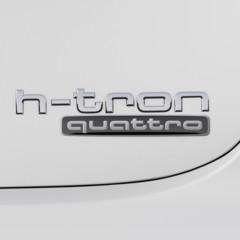Foto 8 de 49 de la galería audi-a7-sportback-h-tron-quattro en Motorpasión