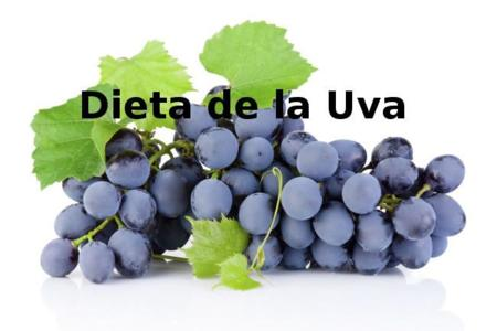 Dietadelauva2