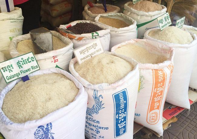 calorias de arroz blanco y pasta