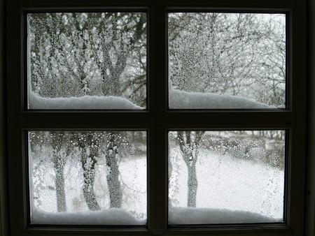 Window 564287 1920