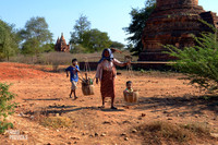 niños Bagan