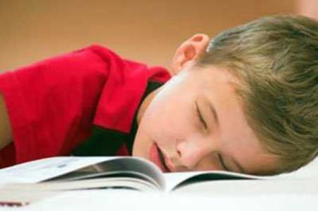 Propuestas para cambiar la Educación: no usar libros de texto