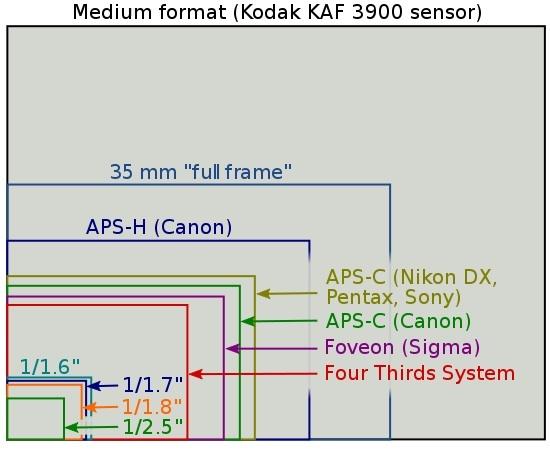 tamanos-sensores.jpg