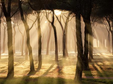 Cómo crear rayos de sol en nuestras fotografías con ayuda de Adobe Photoshop