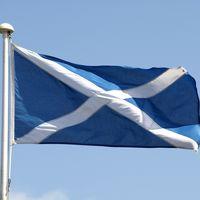 Descubren que un adolescente estadounidense escribió una gran parte de la Wikipedia escocesa sin conocer el idioma