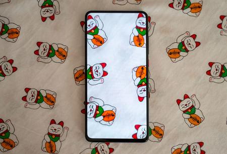 Xiaomi Mi 9t Pro Pantalla 05