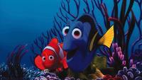 'Buscando a Nemo', cosas que perdimos en la tormenta