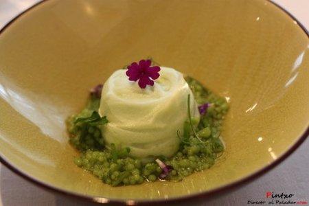 Moshi Salsa verde