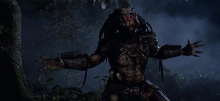 Depredador 5