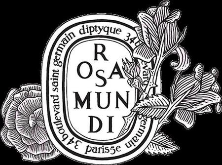 Diptyque París, 34 boulevard Saint-Germain, un lujo para los sentidos