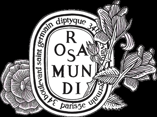 Diptyque par s 34 boulevard saint germain un lujo para for 34 boulevard saint germain paris