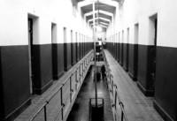 """Reforma del Código Penal: a la cárcel hasta seis años por enlazar a contenidos """"piratas"""""""