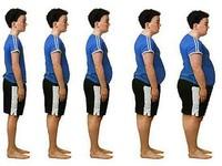 La grasa a lo largo de la historia
