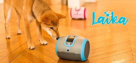 Cam Toy Laika Novedades Tecnologicas Que Llegan En 2019