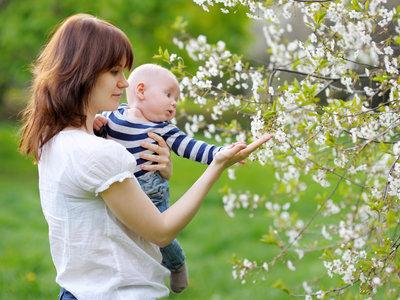 ¿Por qué preferimos cargar al bebé sobre el lado izquierdo del cuerpo? Hay una explicación científica